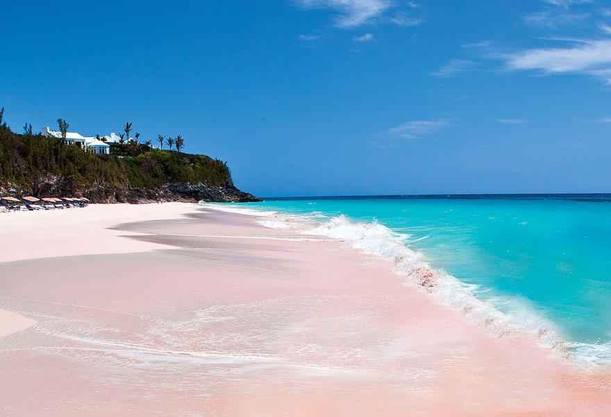 pink sand bahamas