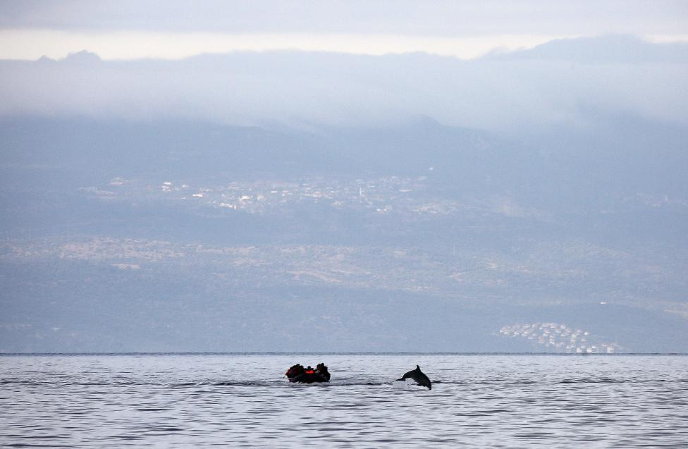 A dolphin jumps in front of a raft overcrowded by Syrian refugees while crossing a part of the Aegean Sea from Turkey (seen in the background) to the Greek island of Lesbos, October 21, 2015. Over half a million refugees and migrants have arrived by sea in Greece this year and the rate of arrivals is rising with over 8,000 coming on Monday alone, in a rush to beat the onset of freezing winter, the United Nations said on Tuesday. REUTERS/Yannis Behrakis