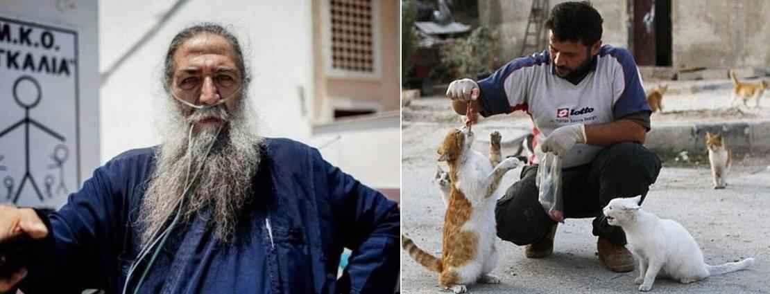 papa_stratis-syria_cats