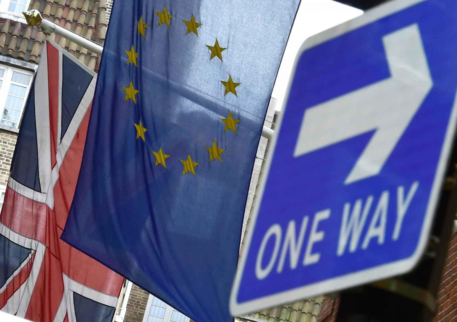 eu-referendum-british-eu-flags