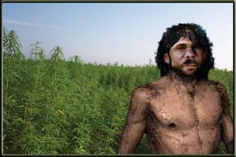 homo-sapien-weed1