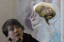 science-brain